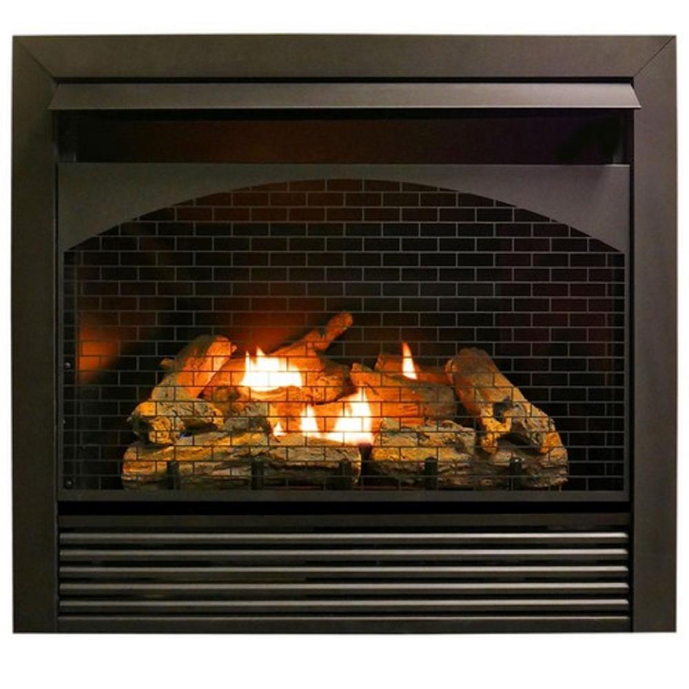 ProCom 32,000 BTU Gas Fireplace Insert Dual Fuel Technology with Remote Control