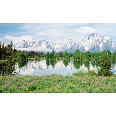 120 in. x 60 in. Window Well Scene - Mountain Flower