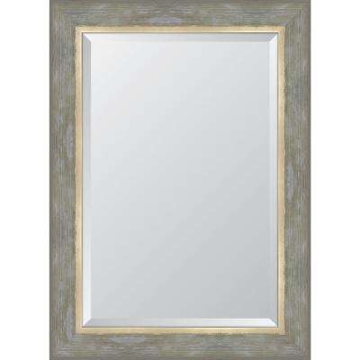 32 in. x 44 in. Champagne Catalina  Framed Mirror