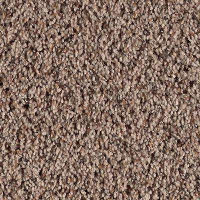 Thrill Seeker - Color Leather Bound Twist 12 ft. Carpet