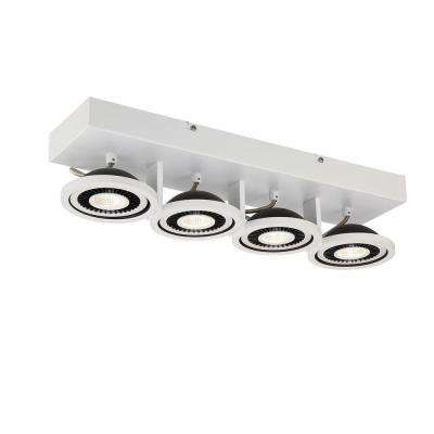 Vision Collection 4-Light White LED Surface Mount