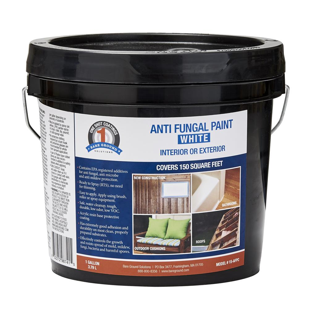 1 Shot 1 gal. White Anti-Fungal Paint-1S-AFPC - The Home Depot
