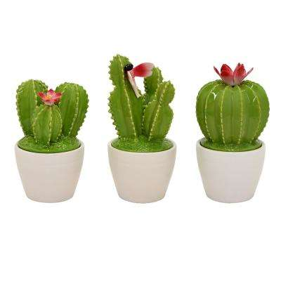 6.5 in. Green Ceramic Cactus Jar (Set of 3)