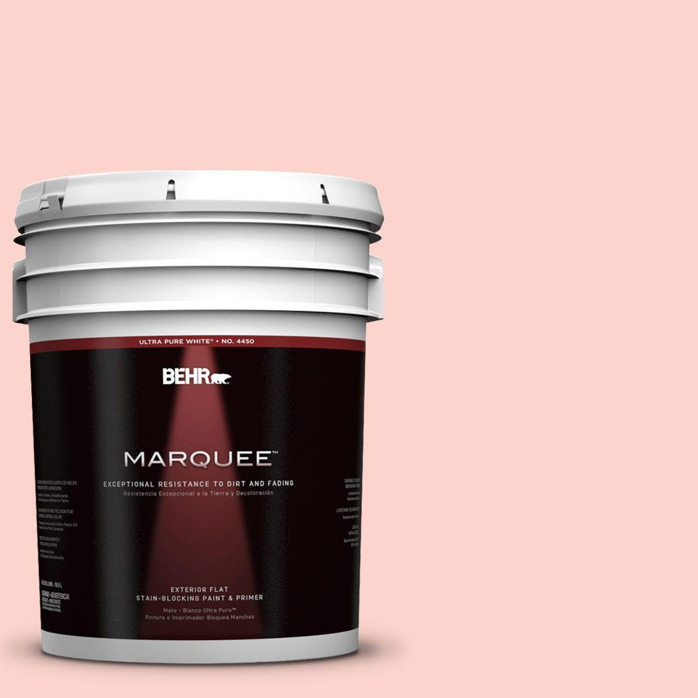 5-gal. #190A-2 Coral Mantle Flat Exterior Paint