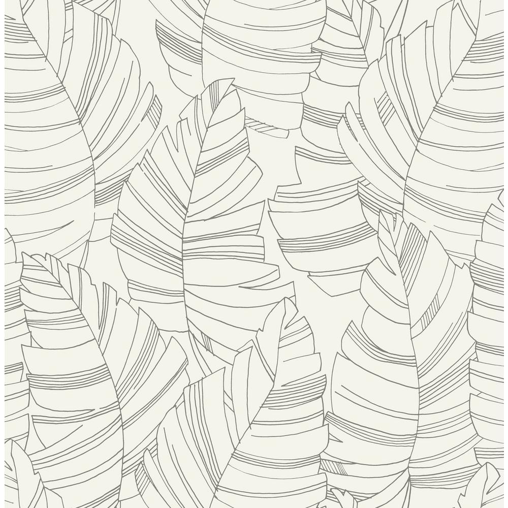 Kids Charcoal Jungle Leaves Wallpaper