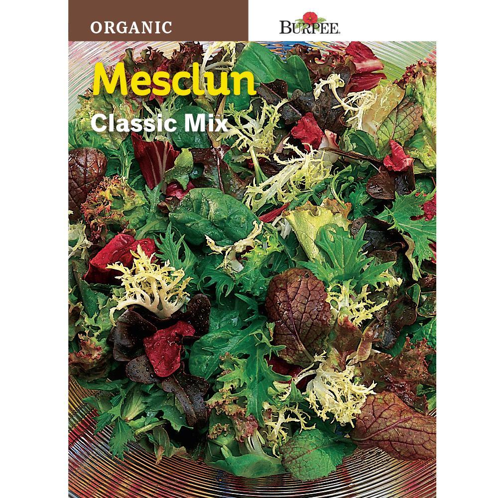 Mesclun Classic Mix Seed
