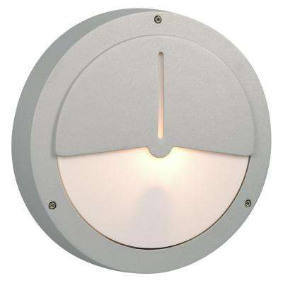 Negron 1-Light Outdoor Matte Silver Wall Light