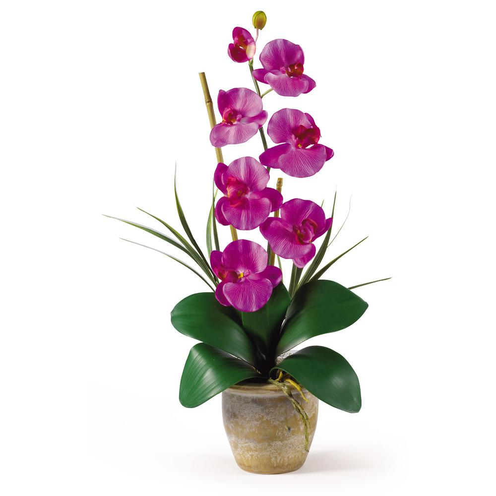 Nearly Natural 21 in. Phalaenopsis Silk Orchid Flower Arrangement in Orchid Nearly Natural 21 in. Phalaenopsis Silk Orchid Flower Arrangement in Orchid