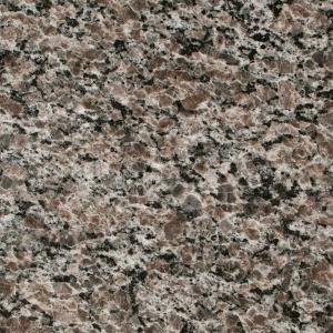 Stonemark Granite 3 In X Countertop Sample New Caledonia Dt G285 The Home Depot