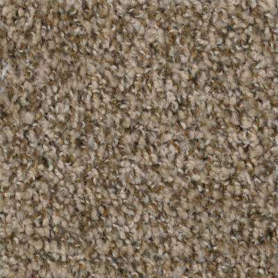 Carpet Sample-Hartsfield -Color Skypoint Twist 8 in. x 8 in.