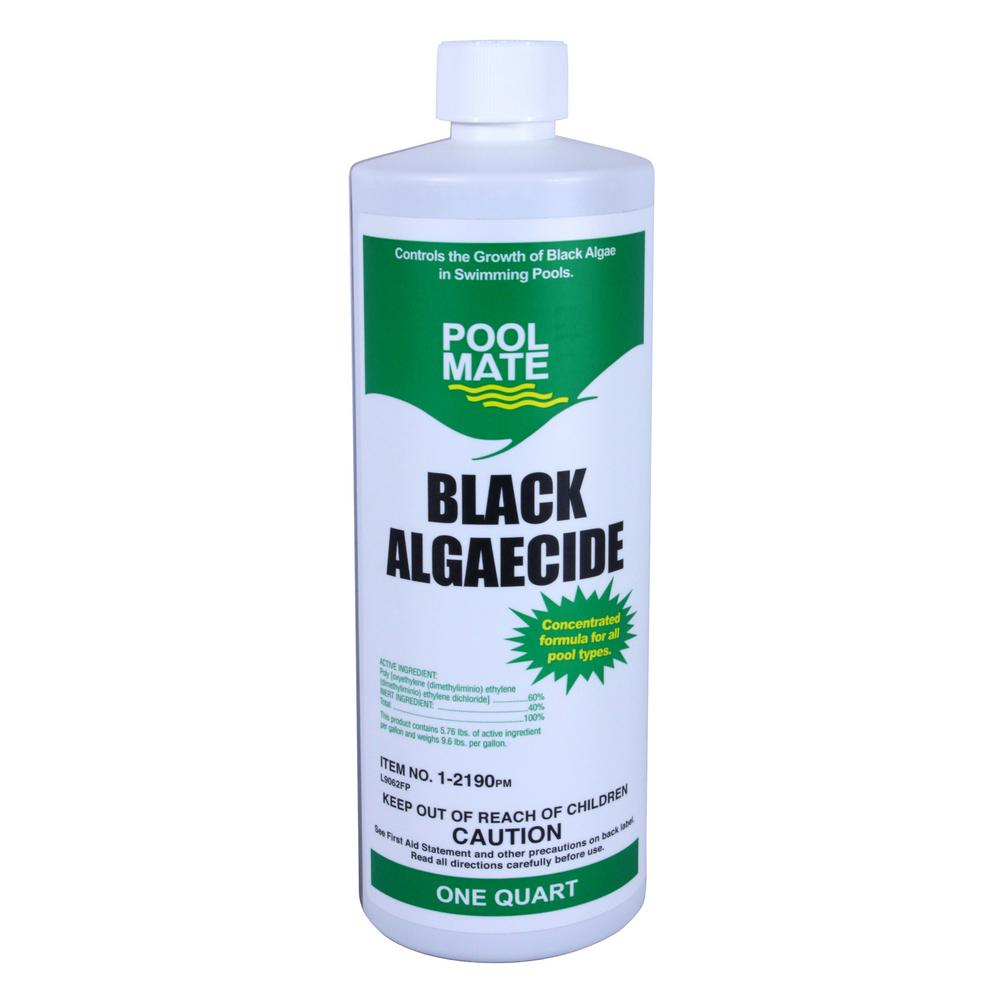 1 qt. Pool Black Algaecide