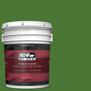 Behr Ultra 5 Gal P380 7 Luck Of The Irish Flat Exterior Paint And Primer In One 485305 The Home Depot