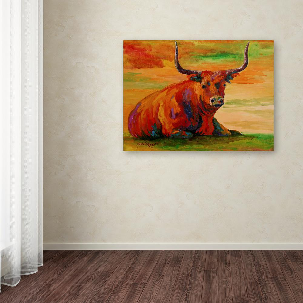 35 in x 47 in longhorn steer 2 by marion rose printed canvas wall art
