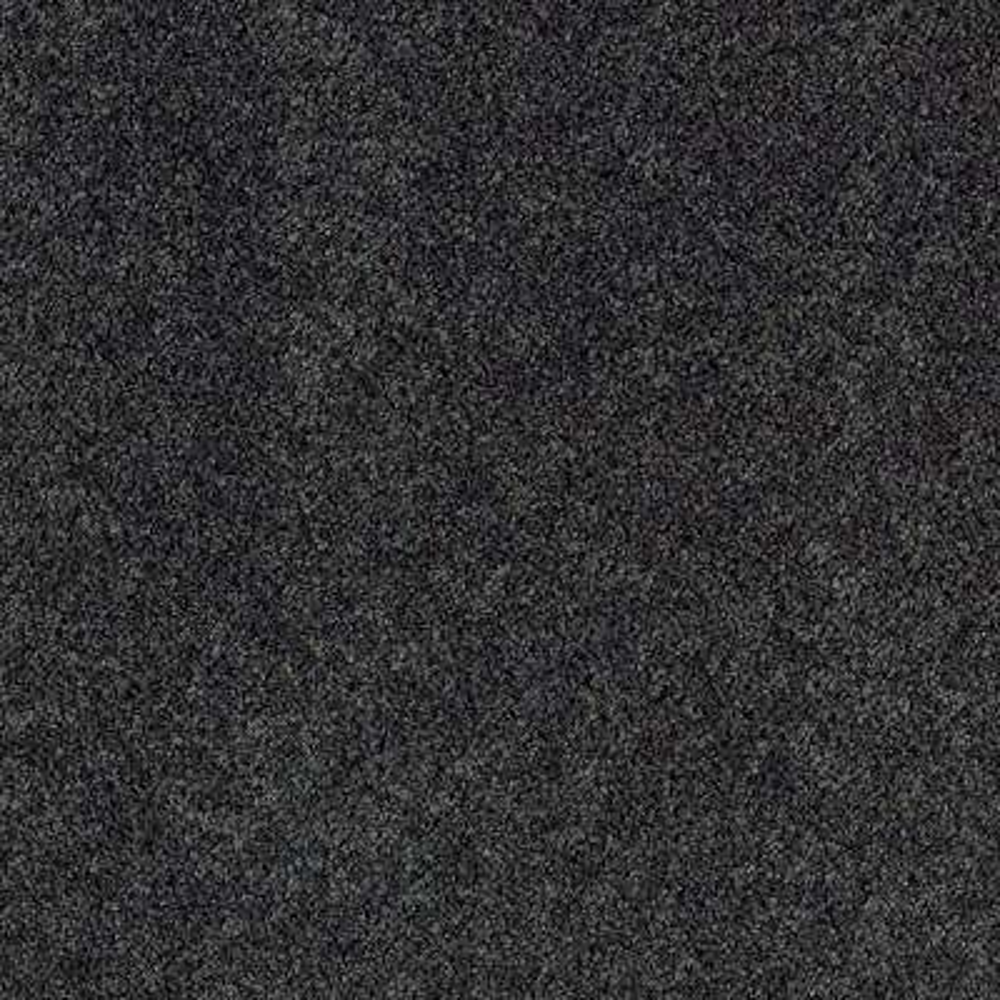 Carpet Sample - Ambrosina I - Color Boulevard Texture 8 in. x 8 in.