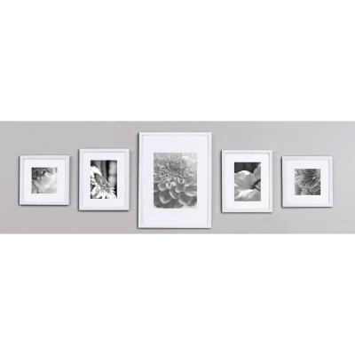 5-Opening 8 in. x 10 in. Matted Picture Frame