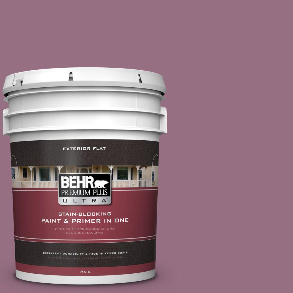 BEHR Premium Plus Ultra 5-gal. #690D-6 Meadow Flower Flat Exterior Paint