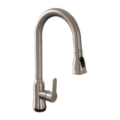Single-Handle Pull Out Sprayer Kitchen Faucet in Brushed Nickel