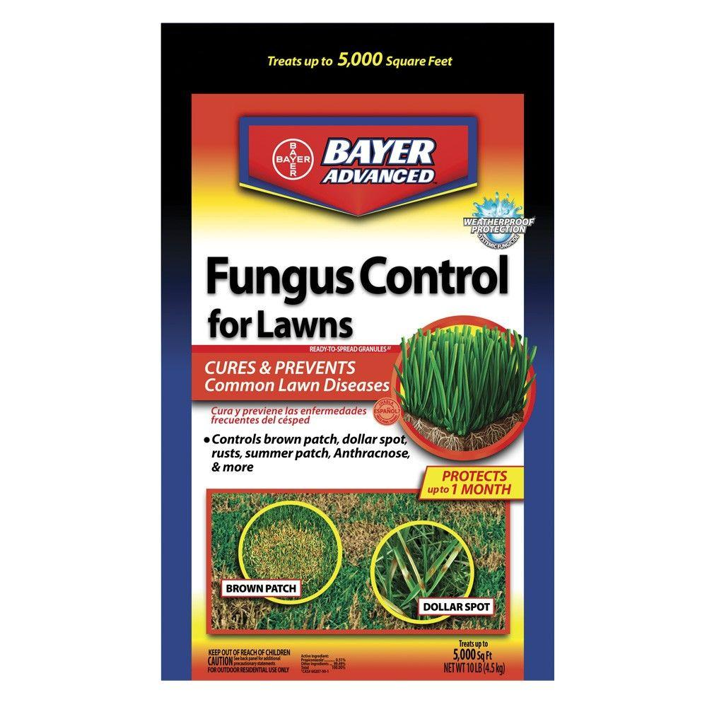10 lb. Granules Fungus Control for Lawns