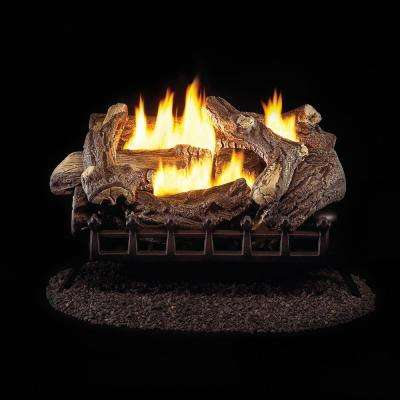 24 in. Vent-Free Natural Gas Log Set with Manual Control
