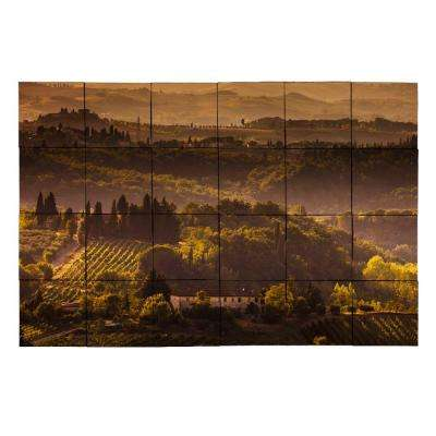 Vineyard1 36 in. x 24 in. Tumbled Marble Tiles (6 sq. ft. /case)