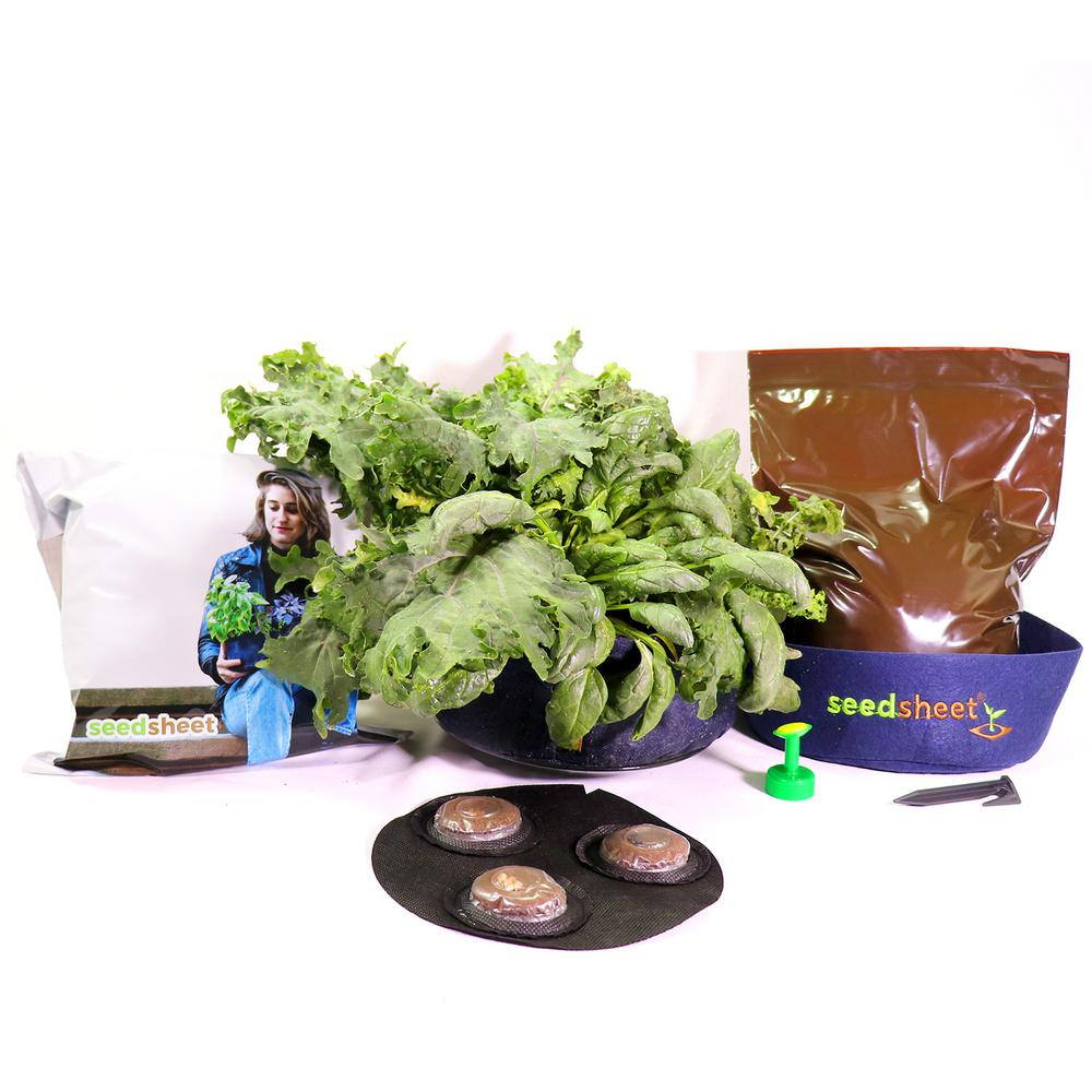 Seedsheet GYO Mini Salads Garden Kit