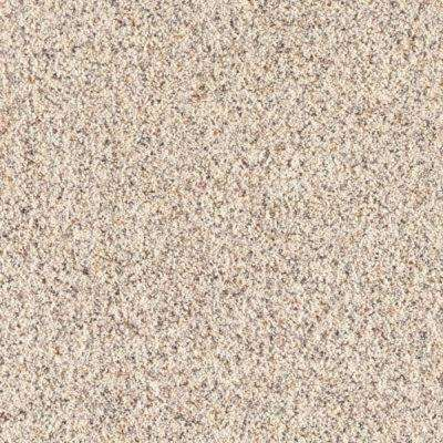 Carpet Sample - Lush II - Color Tundra Texture 8 in. x 8 in.