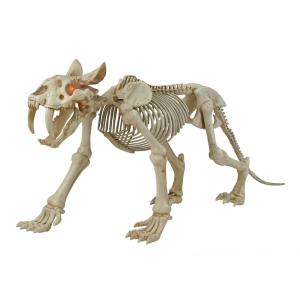 34 in. Animated Skeleton Sabretooth with LED Eyes