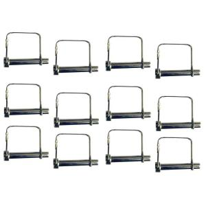 PRO-SERIES Scaffolding Pin Set (12-Pieces) by PRO-SERIES