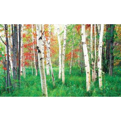 100 in. x 60 in. Window Well Scene - Woods