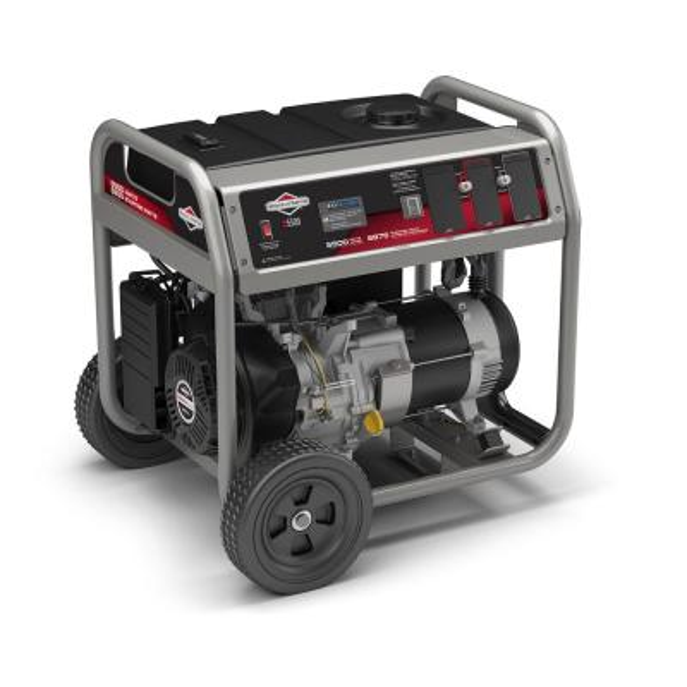 Briggs & Stratton 5,500-Watt Gasoline Powered Portable Generator