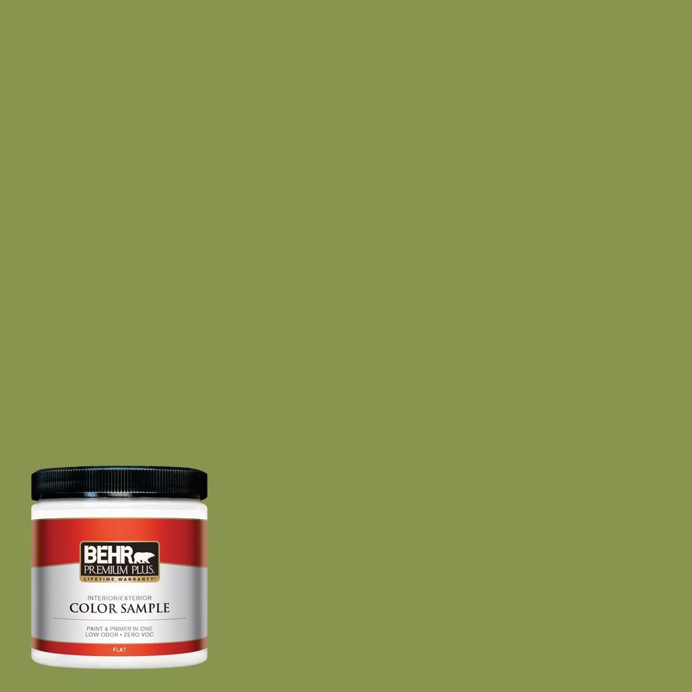 8 oz. #410D-5 Scotland Isle Interior/Exterior Paint Sample