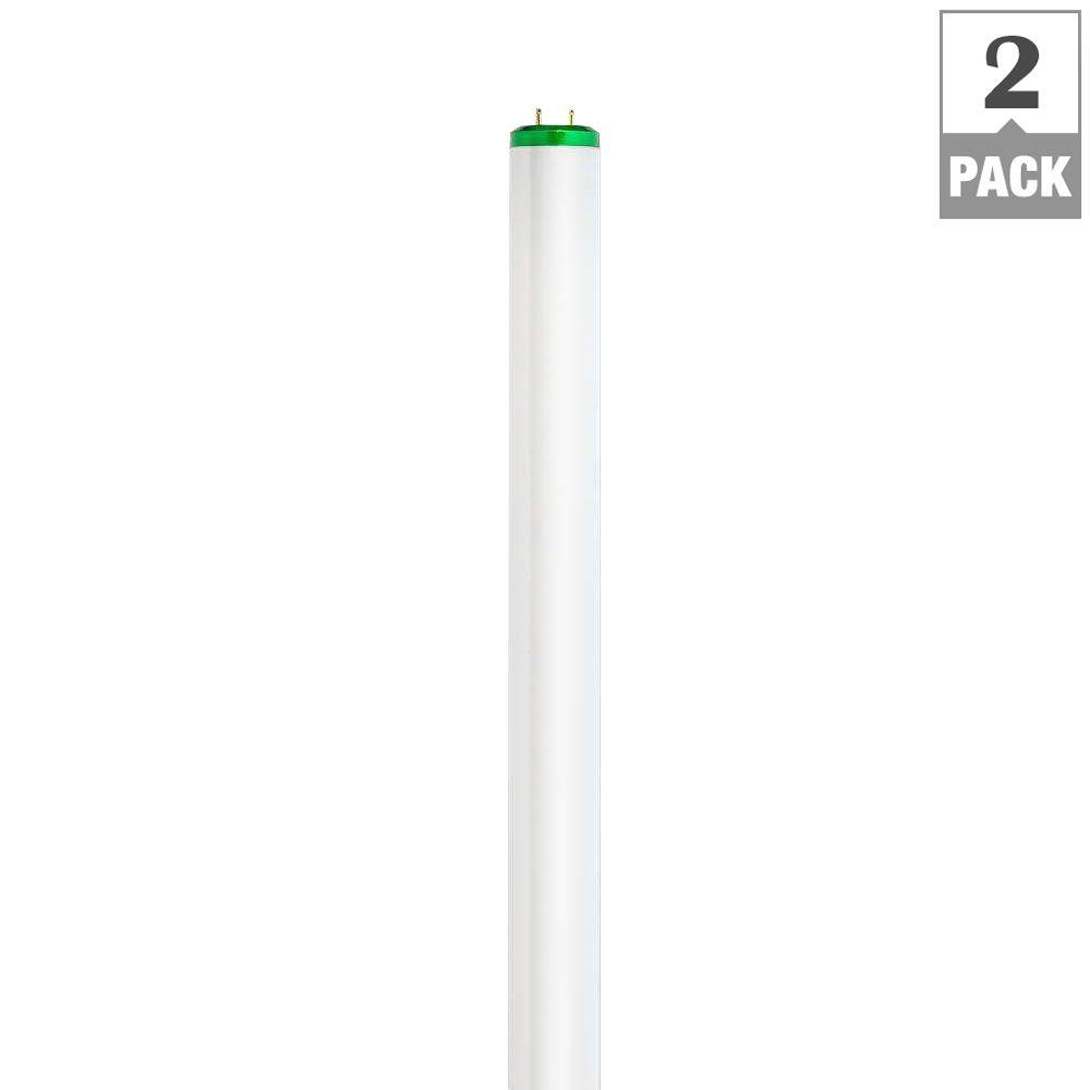 Philips 32-Watt 4 ft. Alto Linear T8 Fluorescent Light Bulb, Cool ...