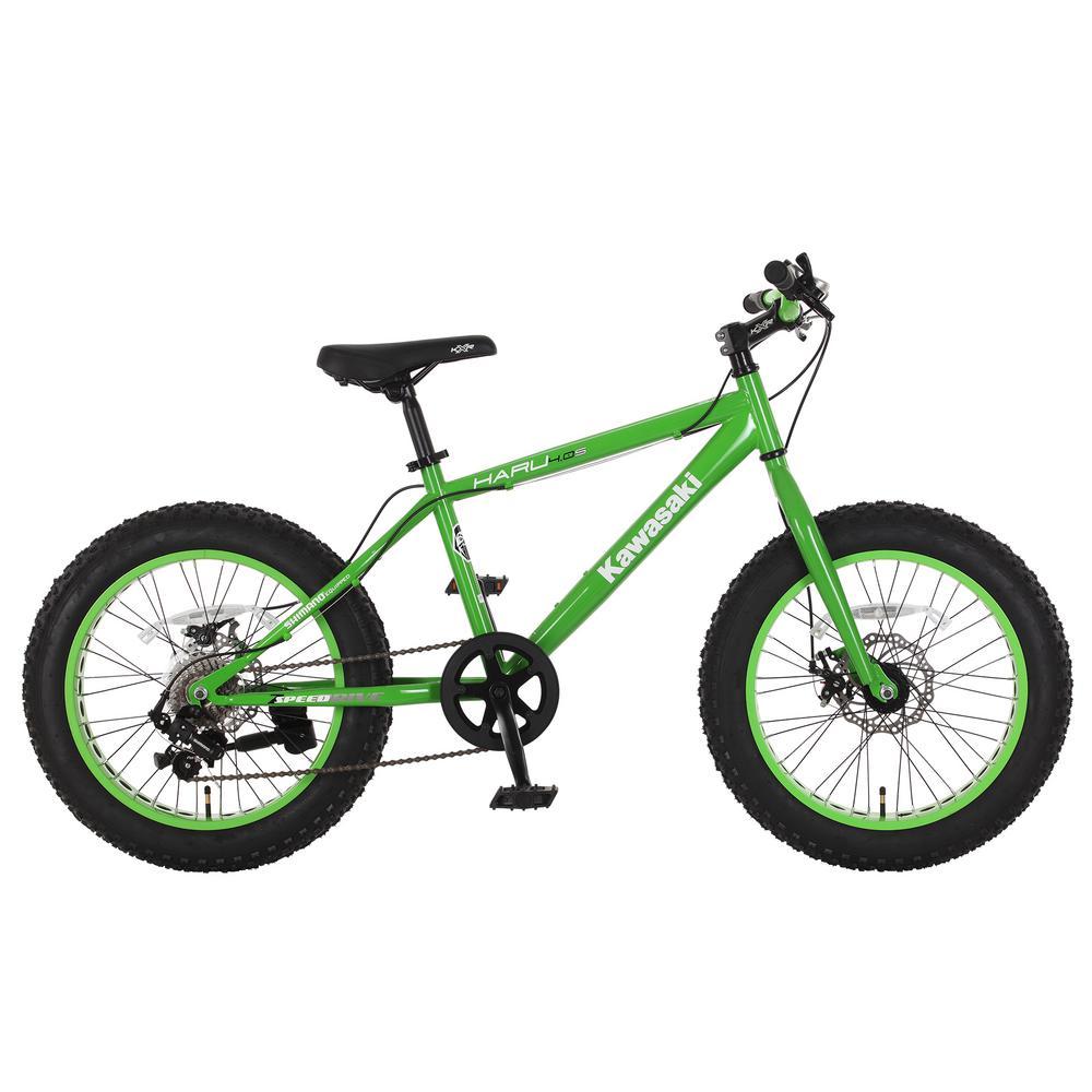 20 in. x 4 in. Wheels Green Haru Fat Tire Bike, Greens