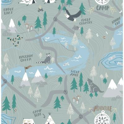 Kids Campground Steel Gray Scenic Wallpaper