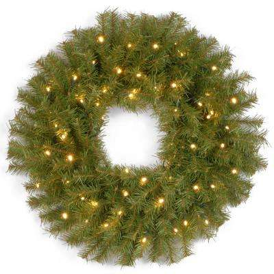 32 in. Norwood Fir Artificial Wreath with LED Lights