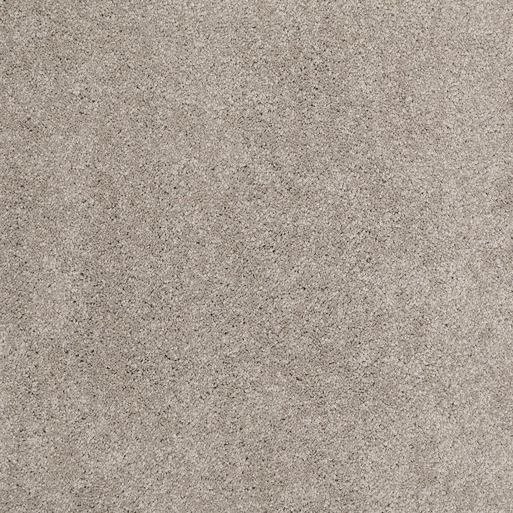 Platinum Plus Carpet Sample Coral Reef I Color Warm