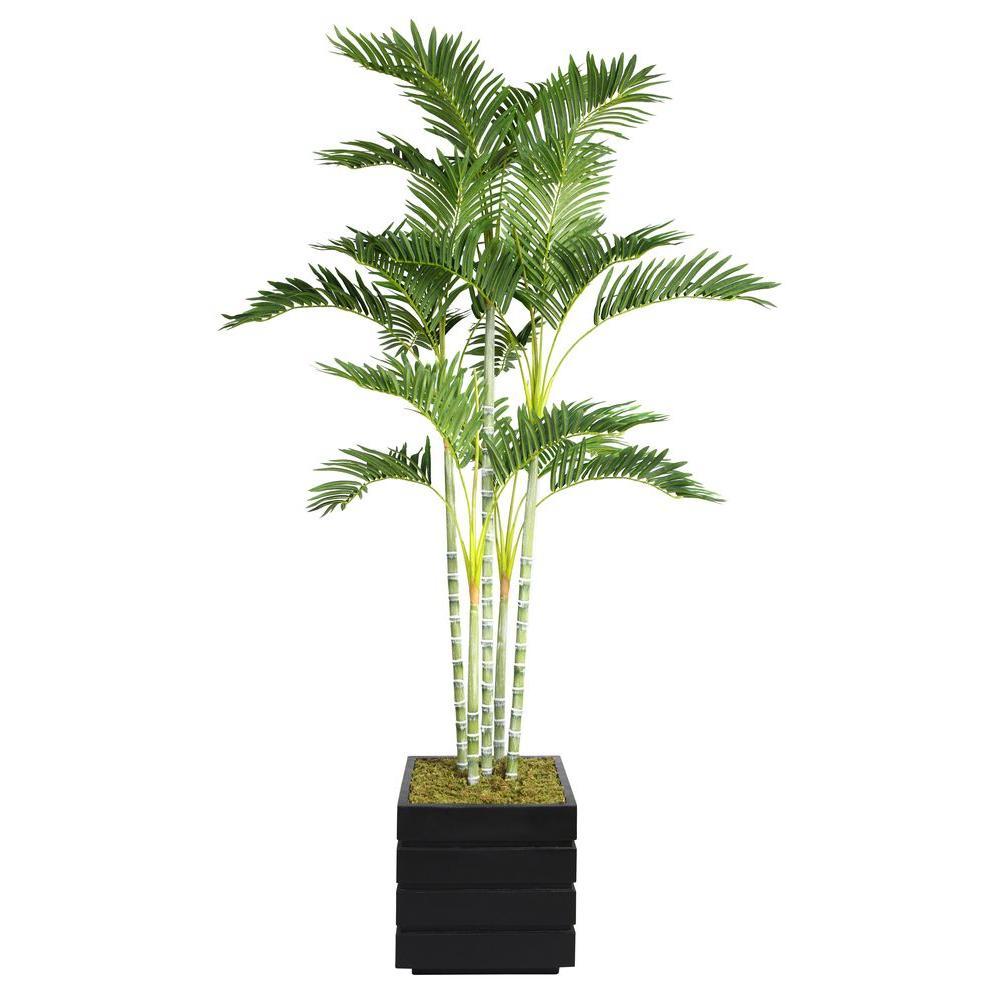 Laura Ashley 74 in. Tall Palm Tree in 14 in. Fiberstone P...