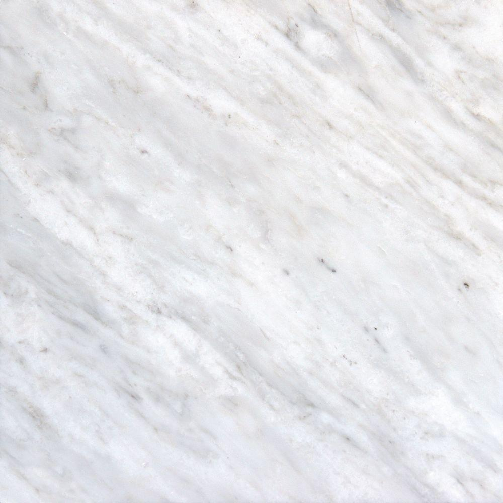 MS International Greecian White 12 in. x 12 in. Polished Marble Floor and  Wall
