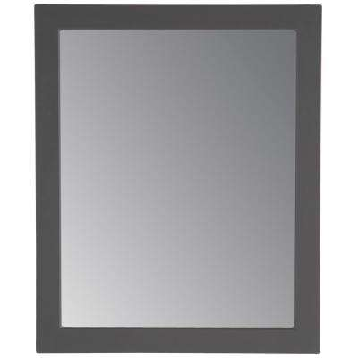 Thornbriar 26 in. W x 31 in. H Single Framed Wall Mirror in Cement