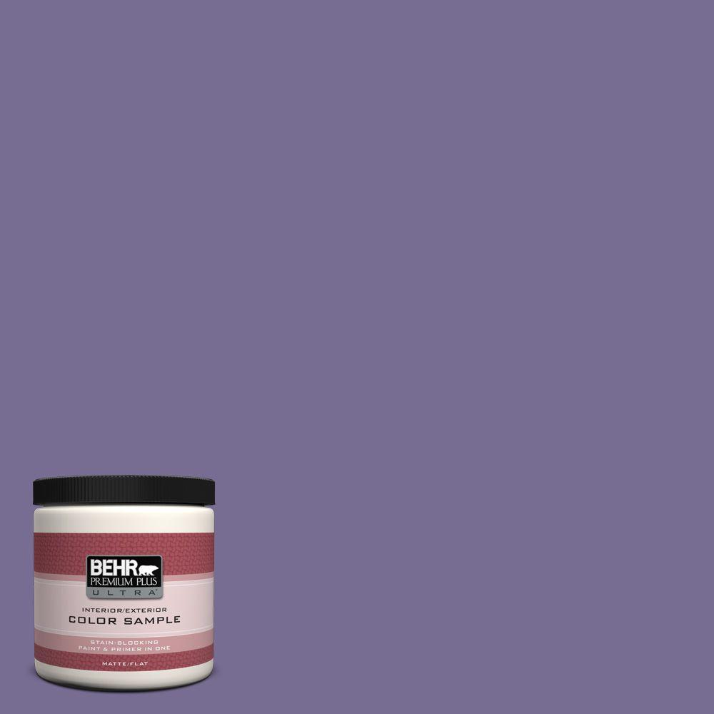 BEHR Premium Plus Ultra 8 oz. #650D-6 Purple Silhouette Interior/Exterior Paint Sample