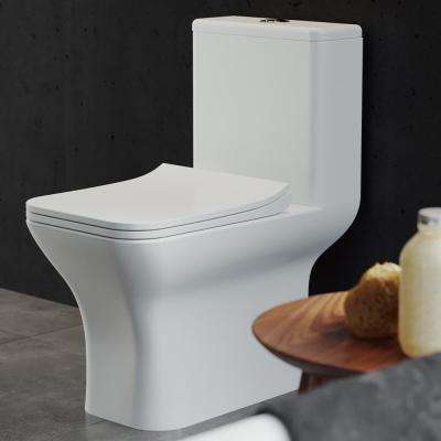 Carre 1-Piece 0.8/1.28 GPF Dual Flush Elongated Toilet in White, Seat Included