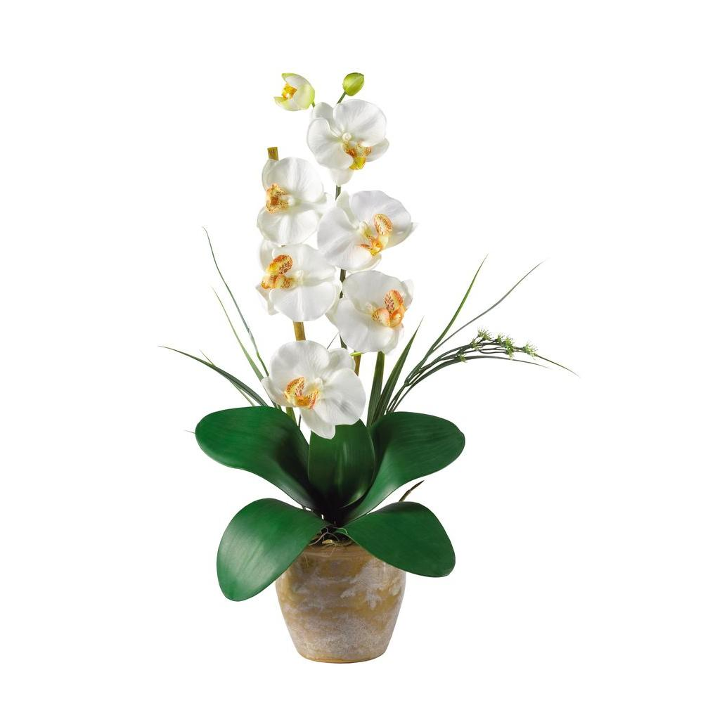 Nearly Natural 21 in. Single Stem Phalaenopsis Silk Orchid Flower Arrangement, Beige/Ivory