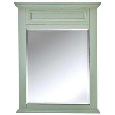 Sadie 28 in. W x 36 in. H Single Framed Wall Mirror in Antique Light Cyan