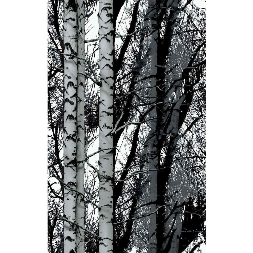 17 in. x 59 in. Birchwood premium static cling film window film