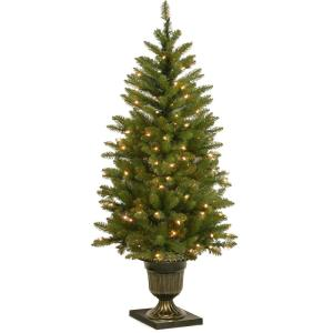 4 ft. Dunhill Fir Entrance Artificial Christmas Tree with Clear Lights