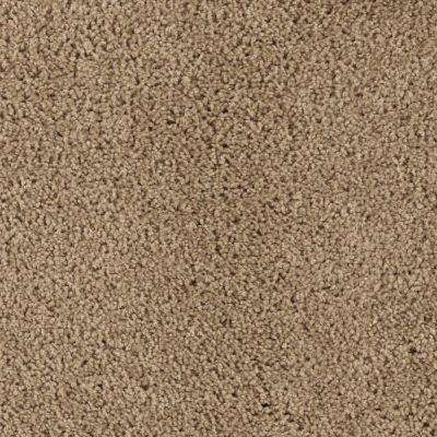 Carpet Sample - Ashcraft II - Color Spice Cake Texture 8 in. x 8 in.