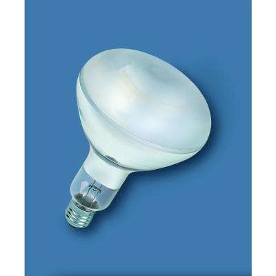 100-Watt Equivalent A19 Dimmable Double Life Eco-Incandescent Light Bulb,  Soft White (8-Pack)