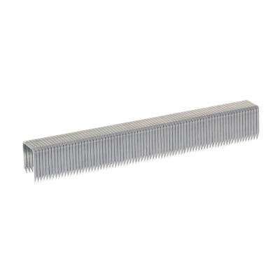 T50 17/32 in. Leg x 3/8 in. Crown 3/8-Gauge Galvanized Steel Ceiltile Staples (1,250-Pack)