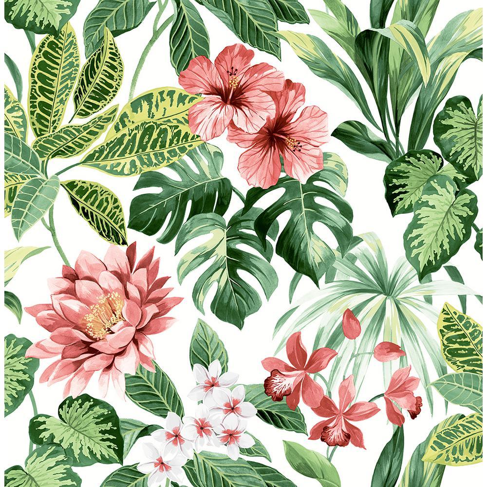 Brewster 56 4 Sq Ft Josefa Green Tropical Wallpaper Uw25893