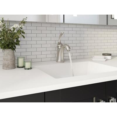Forte Single Hole Single-Handle Low-Arc Water-Saving Bathroom Faucet in Vibrant Brushed Nickel